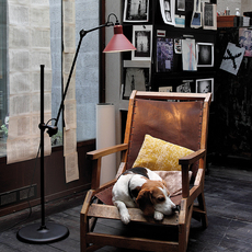 Lampe gras n 215 bernard albin gras lampadaire floor light  dcw n 215 bl red conic  design signed nedgis 105810 thumb