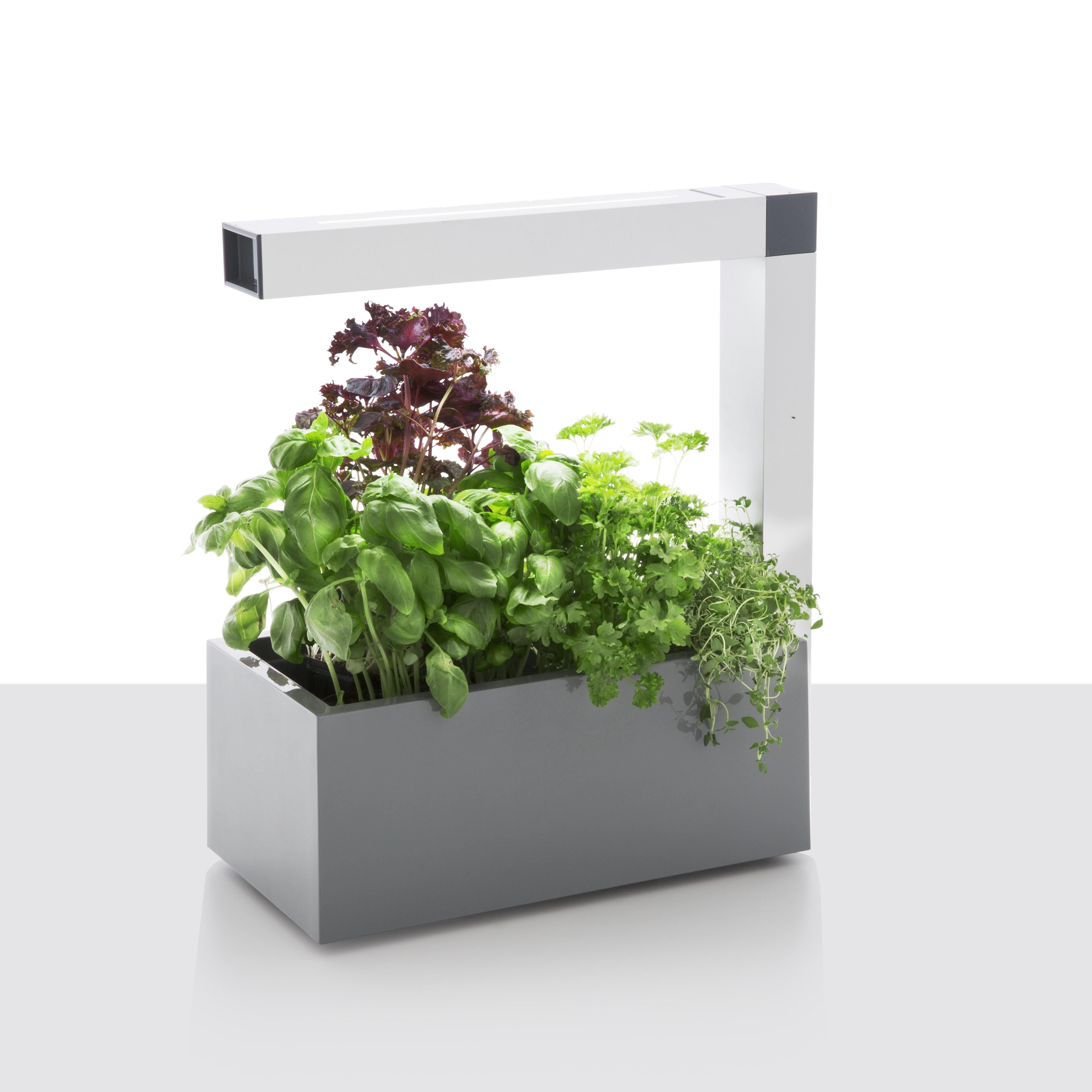 Table lamp, herbie, led, grey, h44cm   tregren   nedgis
