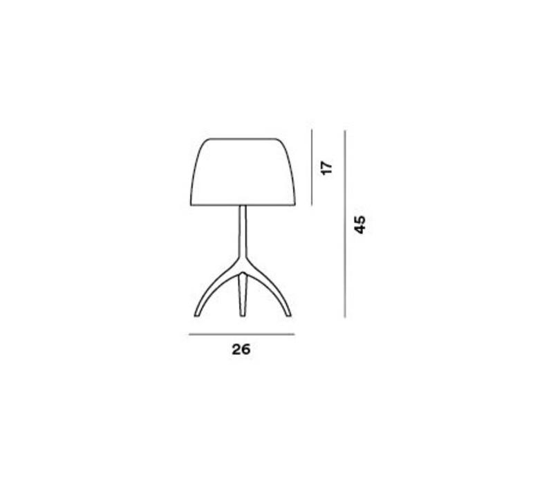 Lumiere grande rodolfo dordini lampe a poser table lamp  foscarini 026001r262  design signed nedgis 85312 product