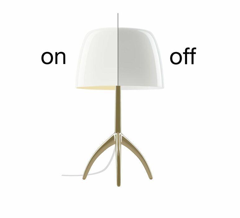 Lumiere piccola rodolfo dordini lampe a poser table lamp  foscarini 0260212r211  design signed nedgis 86073 product