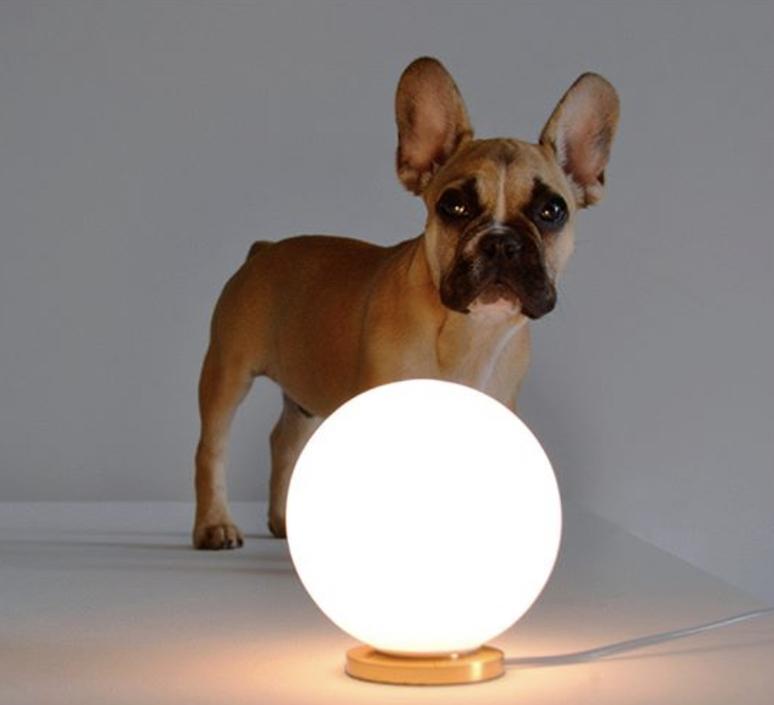 Pallina gio ponti lampe a poser table lamp  fontanaarte f443000150 ne laiton  design signed nedgis 79113 product