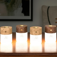 Smart diffuser lamp ash wood studio gingko lampe a poser table lamp  gingko g017ah  design signed nedgis 112396 thumb