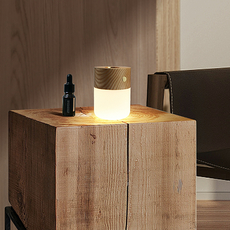 Smart diffuser lamp walnut wood studio gingko lampe a poser table lamp  gingko g017wt  design signed nedgis 112390 thumb
