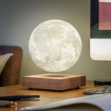 Smart moon lamp walnut wood  studio gingko lampe a poser table lamp  gingko g019wt  design signed nedgis 112378 thumb