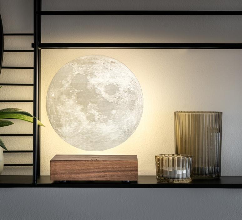 Smart moon lamp walnut wood  studio gingko lampe a poser table lamp  gingko g019wt  design signed nedgis 112380 product