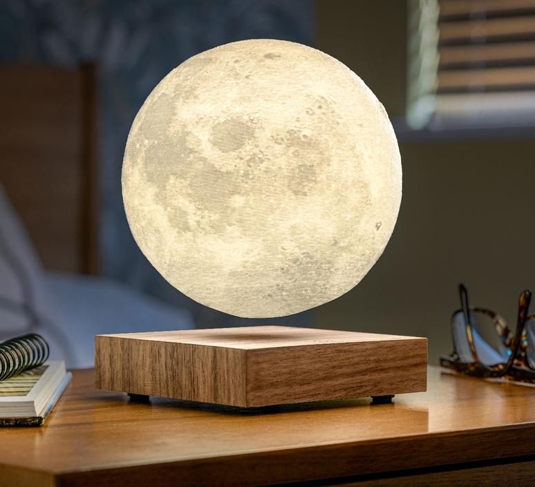 Smart moon lamp walnut wood  studio gingko lampe a poser table lamp  gingko g019wt  design signed nedgis 112381 product