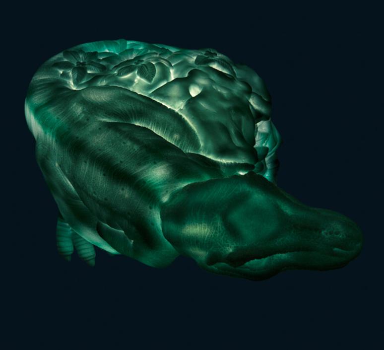 Dino roar marke newton goodnight light dino roar green mint luminaire lighting design signed 25716 product