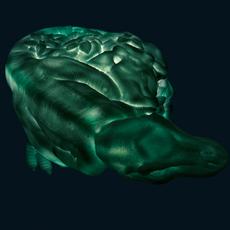 Dino roar marke newton goodnight light dino roar green mint luminaire lighting design signed 25716 thumb
