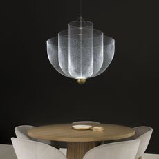 Meshmatics rick tegelaar suspension pendant light  moooi molmesh   design signed 57069 thumb