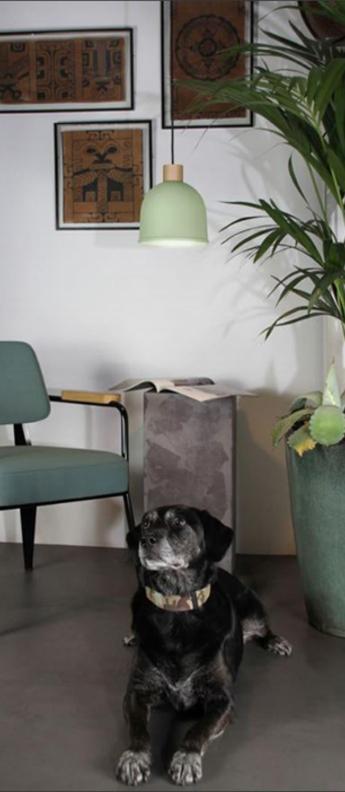 Suspension ons aloe o21 4cm h23 4cm easy light by carpyen normal
