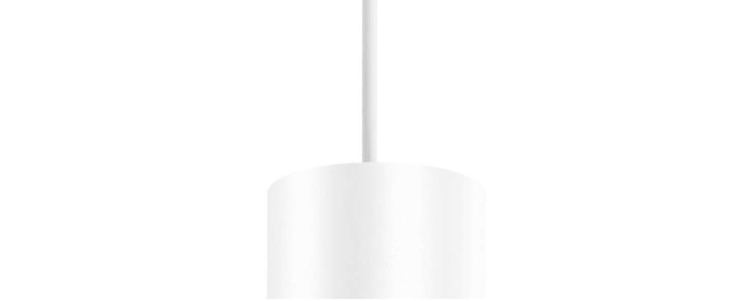 Suspension ray ceiling suspended 2 0 blanc led 2700k 420lm o6 7cm h20cm wever ducre normal