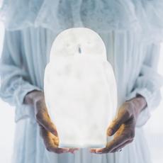 Akira chouette eva newton goodnight light akira the owl lamp luminaire lighting design signed 27745 thumb
