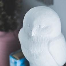 Akira chouette eva newton goodnight light akira the owl lamp luminaire lighting design signed 27747 thumb