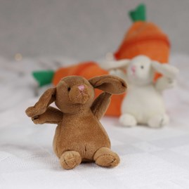 Bunny In A Carrot