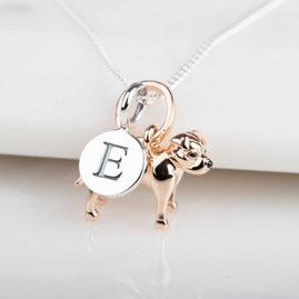 Personalised Staffordshire Bull Terrier Necklace