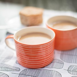 Contemporary Style Mug In Tangerine