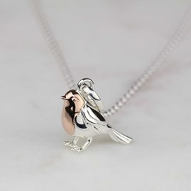 Rose Gold And Solid Silver Robin Necklace