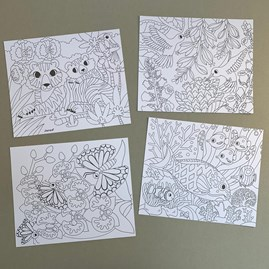Colour In And Velvet Cards