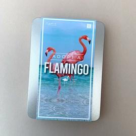 Adopt a Flamingo Gift Tin