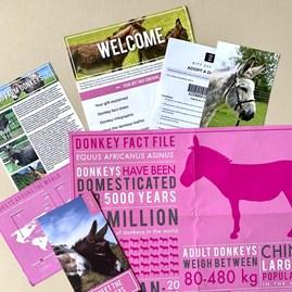 Adopt a Donkey Gift Tin