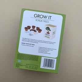 Grow It Bonsai Trees Gift Box