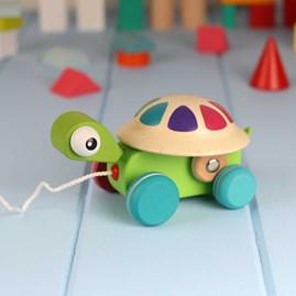 Zigolos Pull Along Turtle
