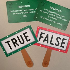 Festive True Or False Game