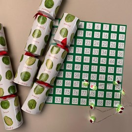Festive Sprout Christmas Crackers