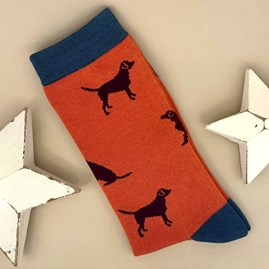 Men's Bamboo Labrador Socks in Orange