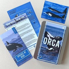 Adopt an Orca Gift Tin