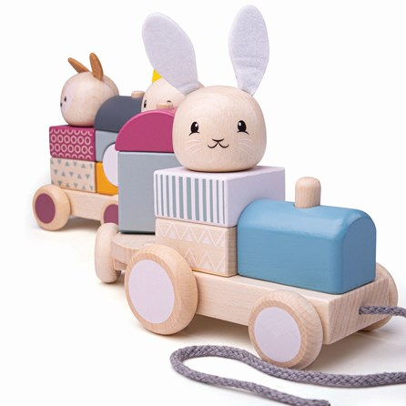Wooden Pull Along Toy Train
