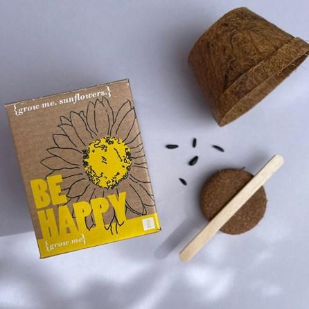 Grow Me Sunflowers Gift Box