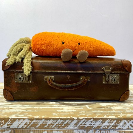 Jellycat Amuseable Carrot Soft Toy