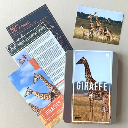 Adopt a Giraffe Gift Tin