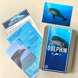 Adopt a Dolphin Gift Tin