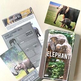 Adopt an Elephant Gift Tin