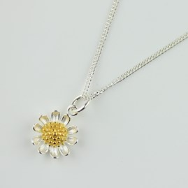 Delicate Silver And Gold Daisy Necklace