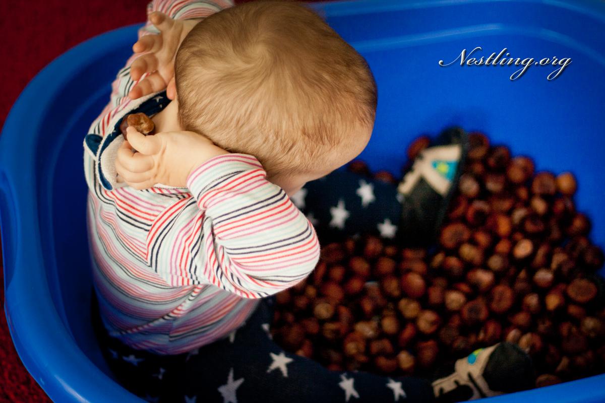 Spielideen für drinnen: Fühlen, Matschen, Sortieren - Nestling