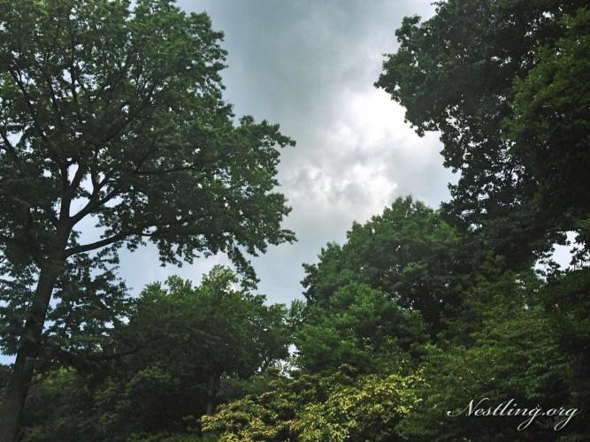 graue-wolken