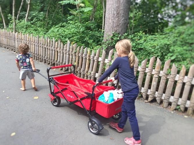 Nestling-Fuxtec-Bollerwagen
