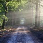 In 10 Minuten Ruhe tanken – Was Meditation mit deiner Seele und deinem Alltag macht