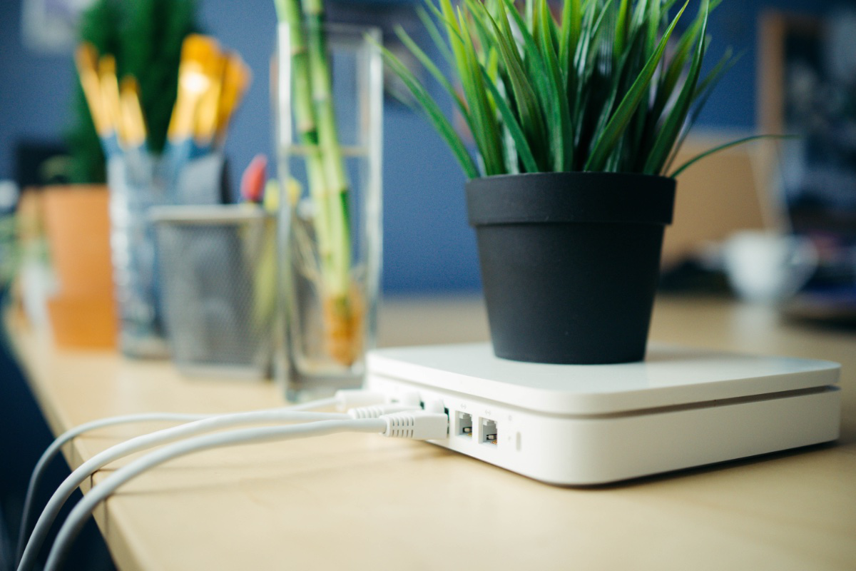 router on desk with plant