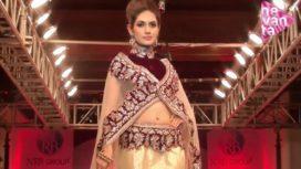 Tania Singh's Bollywood Aspirations