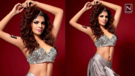 Sherlyn Chopra Gets Candid About her Photo Shoots and her Professional Life