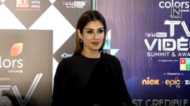 Raveena Tandon and Tv Celebs at IWMBUZZ TV Summit and Awards