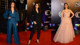 Bollywood Celebs Attend the Critics Choice Awards 2019