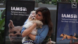Kriti Sanon Having Some Playful Time with Some Super Cute Puppies