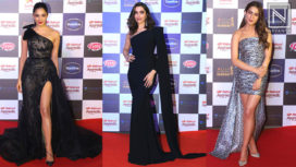 Celebs Grace the Red Carpet of Star Screen Awards 2019 in Style