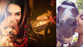 Bollywood Celebs and their Adorable Pets: Lockdown Diaries