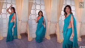 Shilpa Shetty and David Warner Among Others Take Up the Butta Bomma Challenge